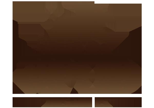 top end bus tours